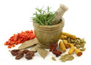 Ayurveda Workshop